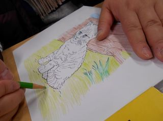 塗り絵2(猫).jpg
