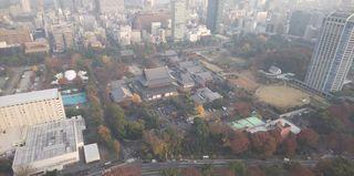 展望台から(増上寺).JPG